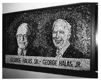 001_halas_sports_center_mosaic.jpg