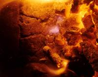 6c_freshfirecoals_gold-vermilion_6c.jpg